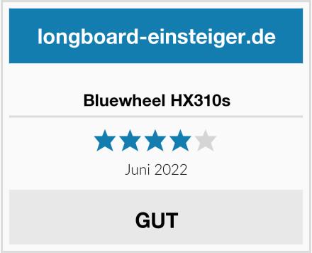 Bluewheel HX310s Test
